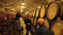 Wine Tasting - Cote de Nuits Region with One Cellar Visit
