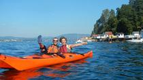 3- Hour Kayak Tour on the Oslofjord, Oslo