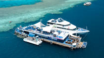 2-Day Great Barrier Reef Reefsleep Experience, Airlie Beach, Overnight Tours