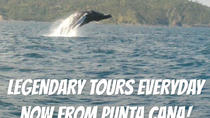 From Punta Cana: Humpback Whales & El Limon Waterfalls National Park, Punta Cana, Attraction Tickets
