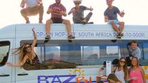 7-Day Pass Hop-on Hop-off Baz Bus Travel Pass – Cape Town Departure, Cape Town, Hop-on Hop-off Tours