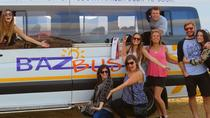 One-Way Hop-on Hop-off Bus from Durban to Cape Town, Durban, Hop-on Hop-off Tours