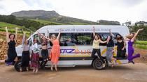 Pass per 7 giorni Hop-On Hop-Off Baz Bus Travel Pass - Partenza Johannesburg, Johannesburg, Hop-on Hop-off Tours
