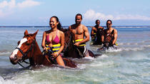 Best of the West Jamaica Island Experience, Montego Bay, Half-day Tours