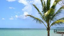 Jamaican ATV Off-Road Adventure in Sandy Bay