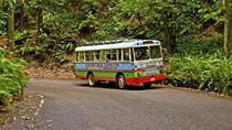 Ocho Rios Zion Bus Tour, Ocho Rios, Literary, Art & Music Tours