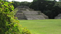 Taste of Belize: Altun Ha City& Rum Tasting Private Tour, Belize City, Private Sightseeing Tours