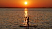Sunset Dolphin Paddleboard Excursion on Delaware Bay, Rehoboth Beach, Stand Up Paddleboarding