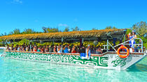 Rarotonga Glass Bottom Lagoon Cruise, Rarotonga, Glass Bottom Boat Tours