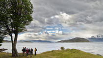 Half-Day Tierra del Fuego National Park with Lunch and Drinks, Ushuaia, Walking Tours