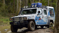 Lakes District 4x4 Full-Day Tour with Lunch from Ushuaia, Ushuaia, Day Trips