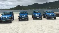 4x4 Island Sightseeing Tour in St Maarten, Philipsburg