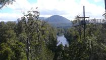 Huon Valley and Tahune Forest Airwalk Tour from Hobart, Hobart, null