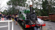Puffing Billy Train con el desfile de pingüinos opcional o Melbourne City Tour, Melbourne, Escapadas de un día
