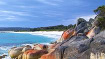 Tagesausflug zur Bay of Fires ab Launeston, Launceston