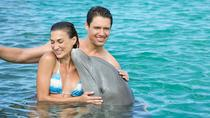 Dolphin Island Action Program from Punta Cana, Punta Cana, Swim with Dolphins