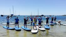 Barwon Heads Introductory Stand Up Paddleboarding Lesson, Victoria, Stand Up Paddleboarding