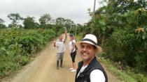 Guayaquil City Tour Including Route of the Fruits and Plantation, Guayaquil, City Tours
