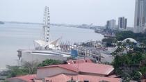 Private Half Day City Tour of Guayaquil and Historical Park, Guayaquil, Private Sightseeing Tours