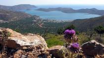 Secrets of Crete - Mount Oxa Adventure, Heraklion, 4WD, ATV & Off-Road Tours