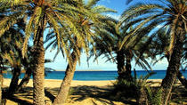 The palm forest of Vai - Adventure Tour, Heraklion, 4WD, ATV & Off-Road Tours