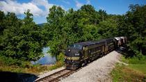 Cheat Mountain Salamander Train Excursion in West Virginia, West Virginia, Rail Tours