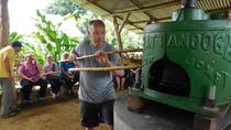 Costa Rican Farm Tour in La Fortuna, La Fortuna, Cultural Tours