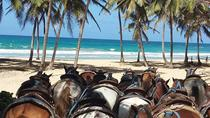 Full Moon Starlight Group Horseback Tour, Punta Cana, Horseback Riding