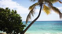 VIP Catalina Island Tour, Punta Cana, Day Trips