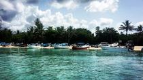 VIP Saona Island Tour, Punta Cana, Day Trips