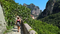 Amalfi Coast Experience: Walking Tour Valle delle Ferriere and Historical Highlights, Amalfi Coast