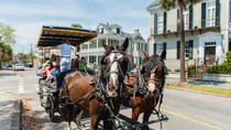 Carriage Tour of Historic Charleston, Charleston, Horse Carriage Rides