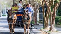Evening Carriage Tour of Downtown Charleston, Charleston, Horse Carriage Rides