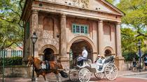 Private Carriage Tour of Historic Charleston, Charleston