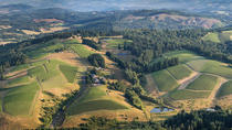 All Day Northern Oregon Wineries and Forest Bike Tour, Portland, City Tours