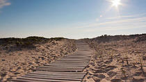 Two Hour Bus Tour of Martha's Vineyard, Cape Cod, Historical & Heritage Tours