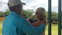 Sporting Clays Intro, Kauai, Adrenaline & Extreme