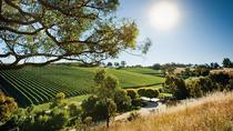 Small Group Adelaide Hills Divine Wine Day Trip from Adelaide, Adelaide, Half-day Tours