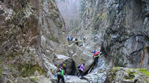 Private Full-Day Trekking Nature Adventure in Stan Gorges from Bucharest, Bucharest, Hiking &...