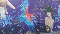 Fat Bike Graffiti y Art Tour en Puerto Vallarta, Puerto Vallarta, Bike & Mountain Bike Tours