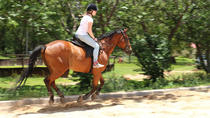 Horseback Riding Adventure in Ocho Rios, Ocho Rios, Horseback Riding