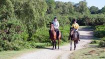 Jamaica Horseback Riding Adventure from Falmouth, Falmouth, Horseback Riding