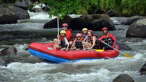 ATV Ride with Ayung River Rafting Experience, Ubud, 4WD, ATV & Off-Road Tours