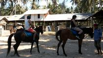 Bali Beach Horse Riding and Hidden Canyon Tour, Ubud, Horseback Riding