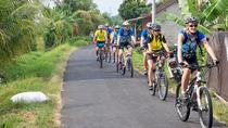 Private Tour: Full-Day Mountain Cycling Adventure Kintamani to Ubud, Bali, Private Sightseeing Tours