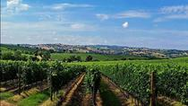 Sumadija Full Day Royal Wine Tour from Belgrade, Belgrade, Day Trips