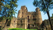 Best of Gondar in One Day: Castles, Churches and Coffee Ceremony, Ethiopia, Coffee & Tea Tours