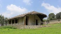 Entoto Mountain Guided Day Tour from Addis Ababa , Addis Ababa, Day Trips