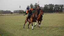 HORSE & POLO Trip in Balcarce Argentina, Cafayate, Multi-day Tours