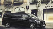 Arrival Private Transfer Luxury Van LIN airport to Milan, Milan, Airport & Ground Transfers